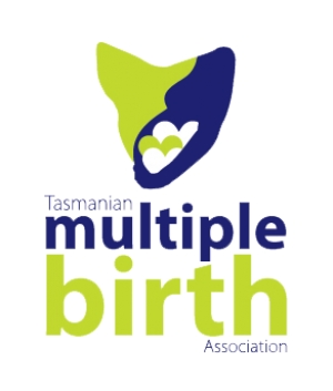 Southern Branch Playgroup and Parent Support Program (Tasmanian Multiple Birth Association)